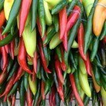 Wild Country: Chillis
