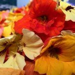 Wild Country Organics: Edible flowers